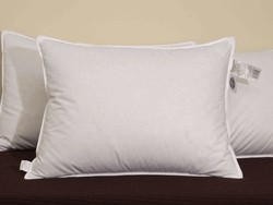 Marriott Hotel Pillow Review 1