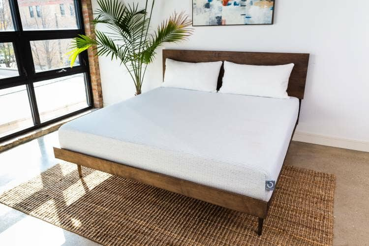 molecule best mattress