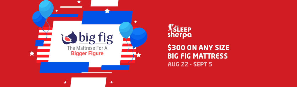 Labor Day Sale - Big Fig